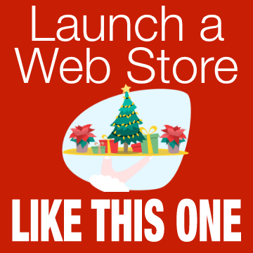 How To Build and Market Niche Web Store