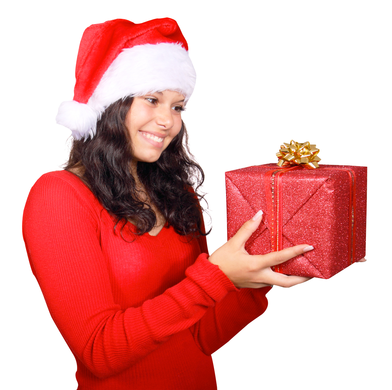 Launch Your Own Black Friday Holiday Christmas Store And Earn Online
